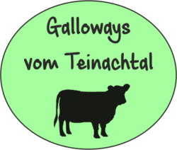Galloways vom Teinachtal